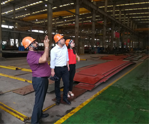 Клиент из Нигерии посетил Aicrane завод